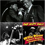 continua a leggere.....Willie Dixon
